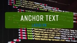 anchor text trong seo